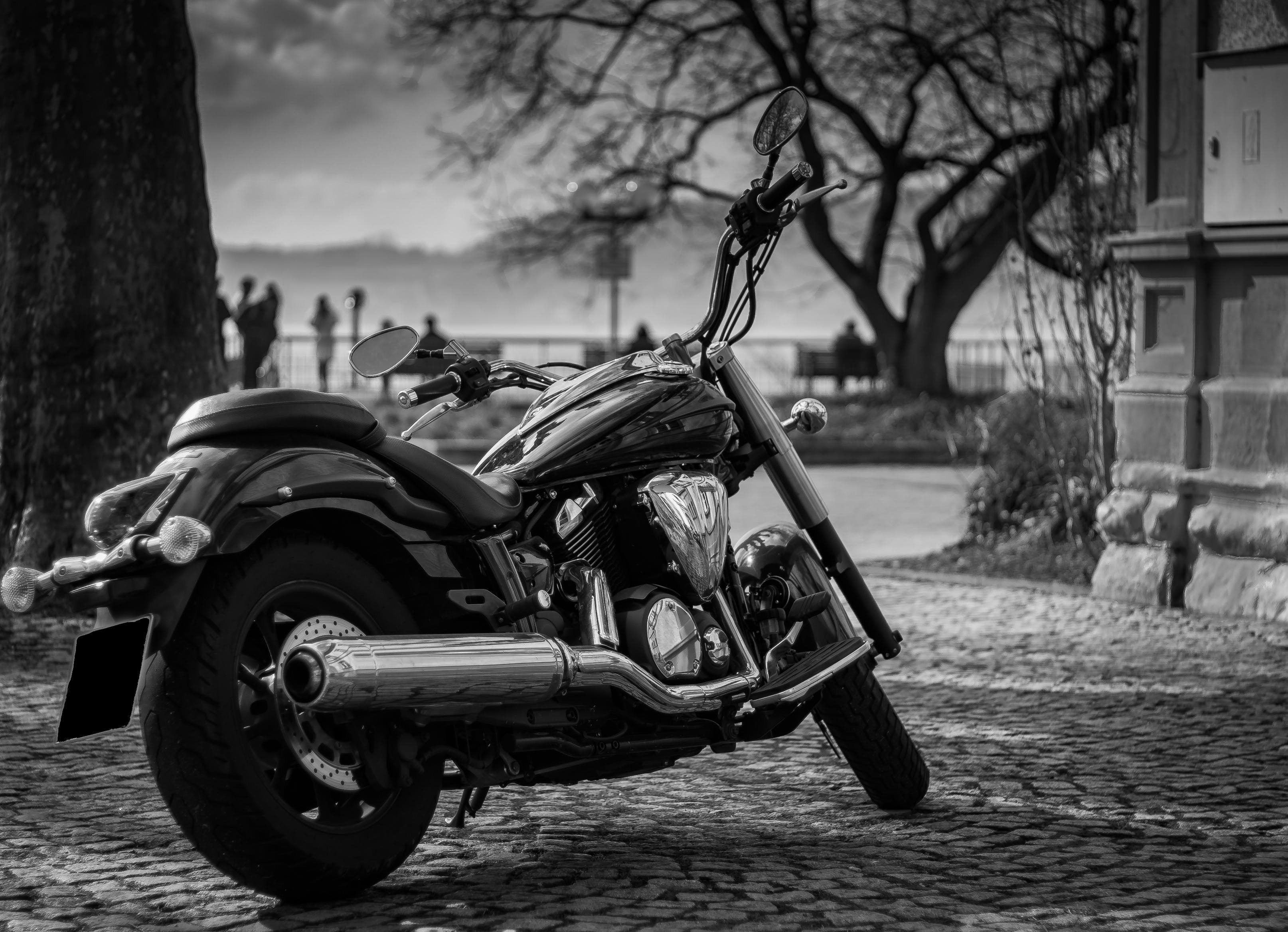 Grayscale Photograph of Black Cruiser Motorcycle Parked Near Tree