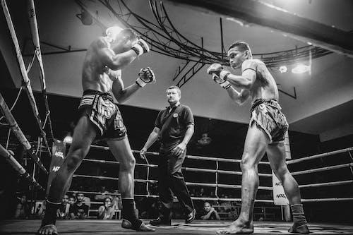 Foto profissional grátis de anel de boxe, atletas, boxe, combate