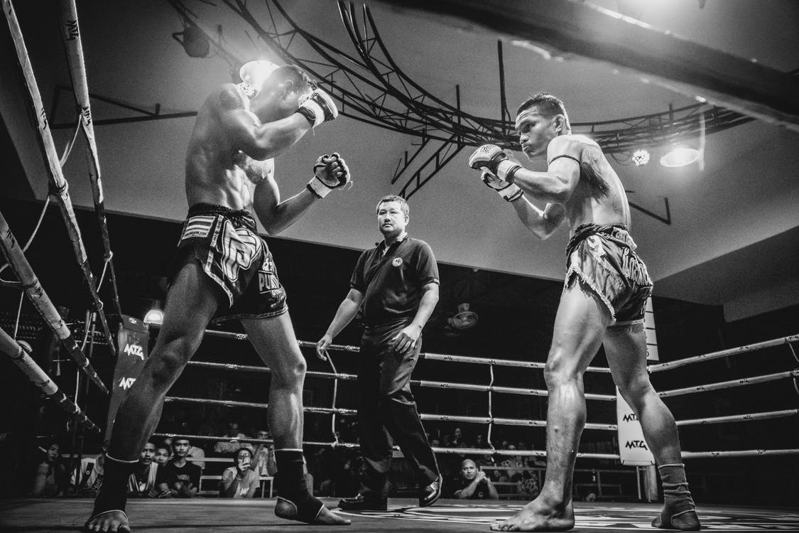 Two Boxers in a Boxing Ring