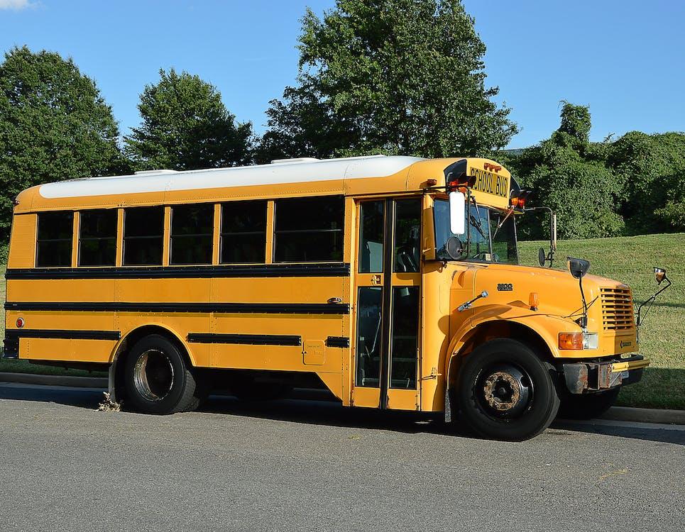 Free stock photo of america, school bus, yellow