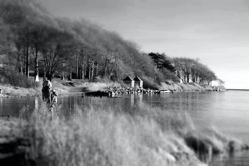 Free stock photo of baltic sea, coast, denmark