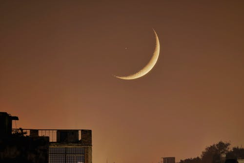 Free stock photo of blood moon, canon, city night