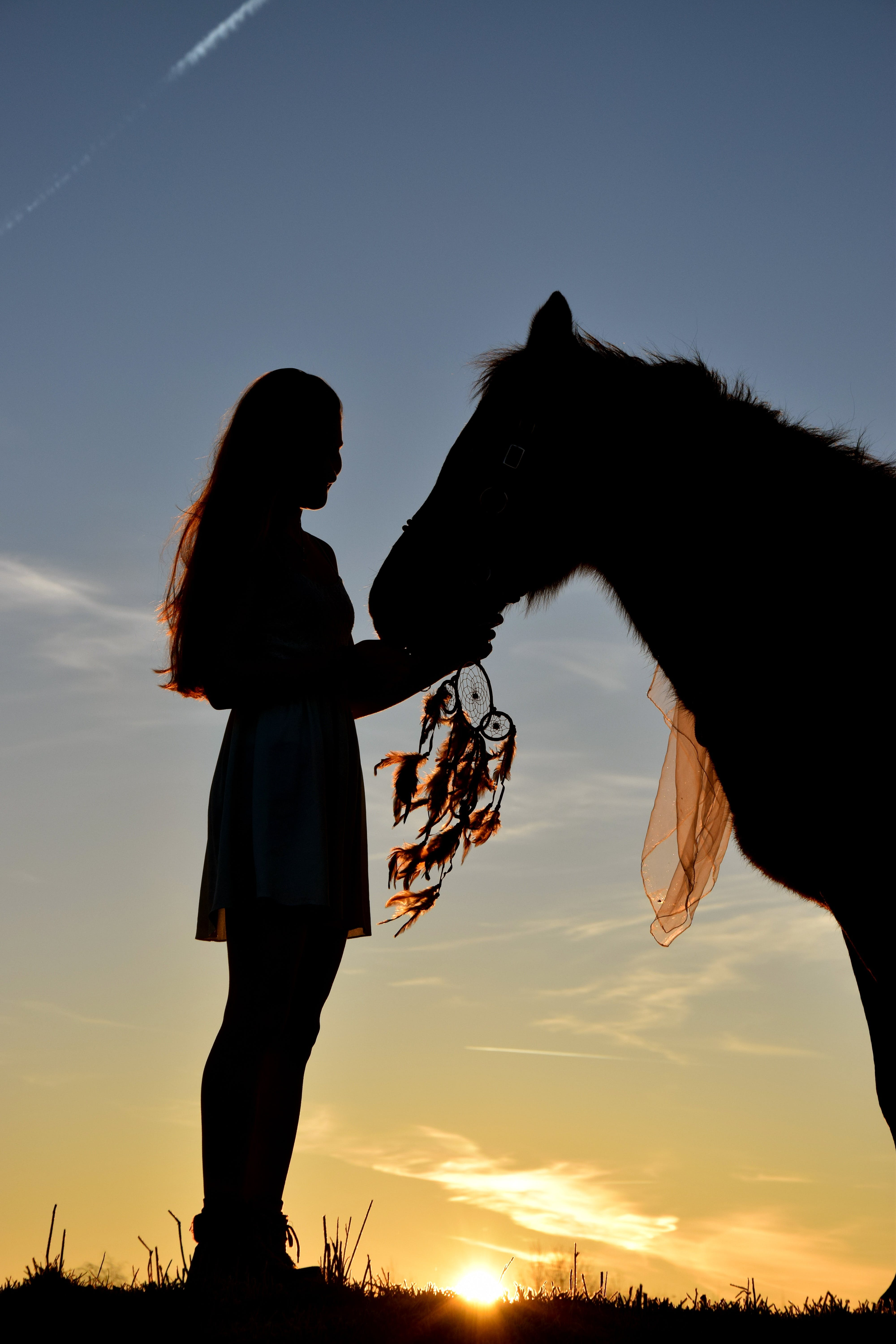 Woman Holding Her Horse