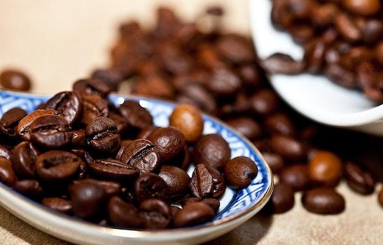 Free stock photo of coffee, arabica, coffee beans, grain coffee