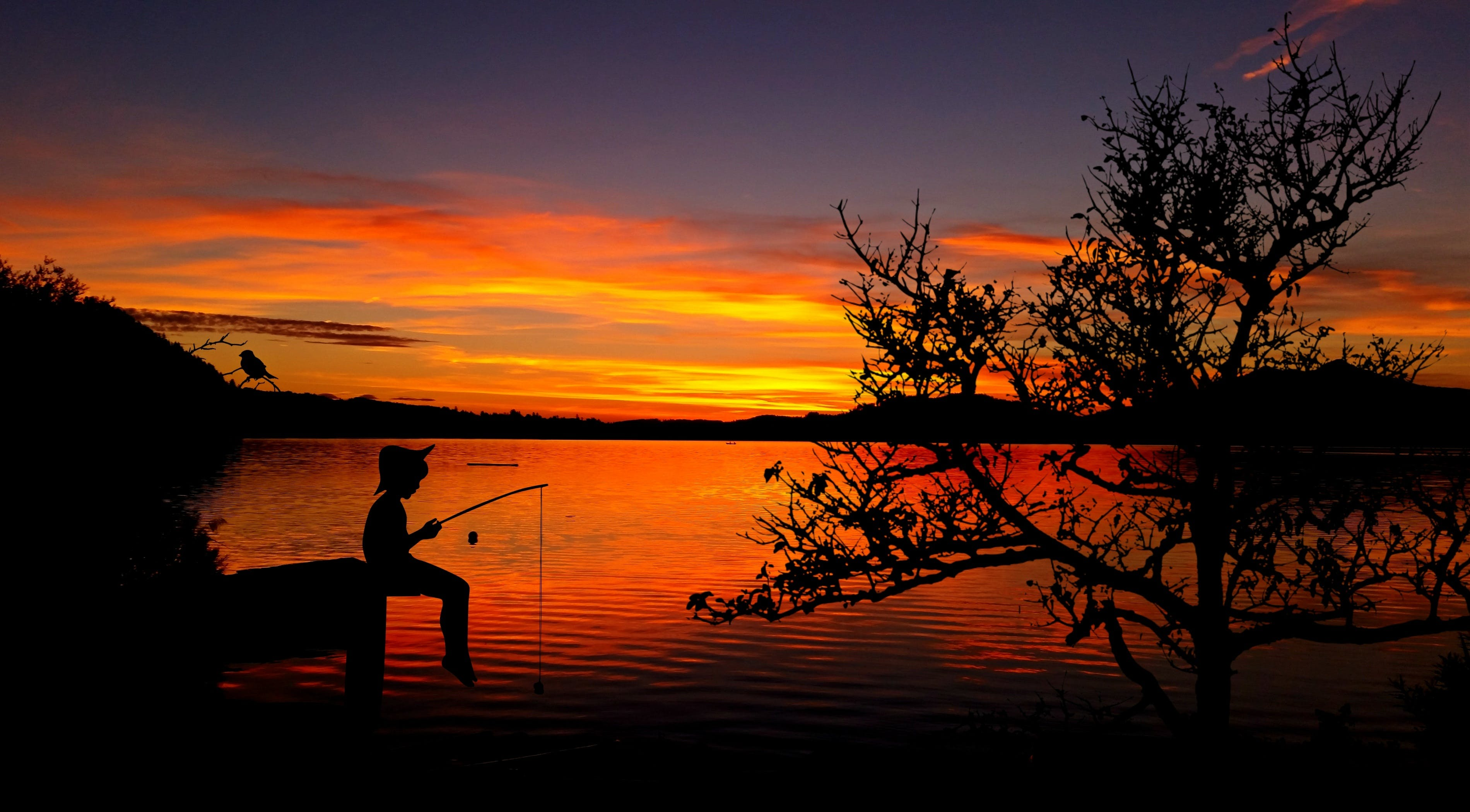 Silhouette of Person Fishing