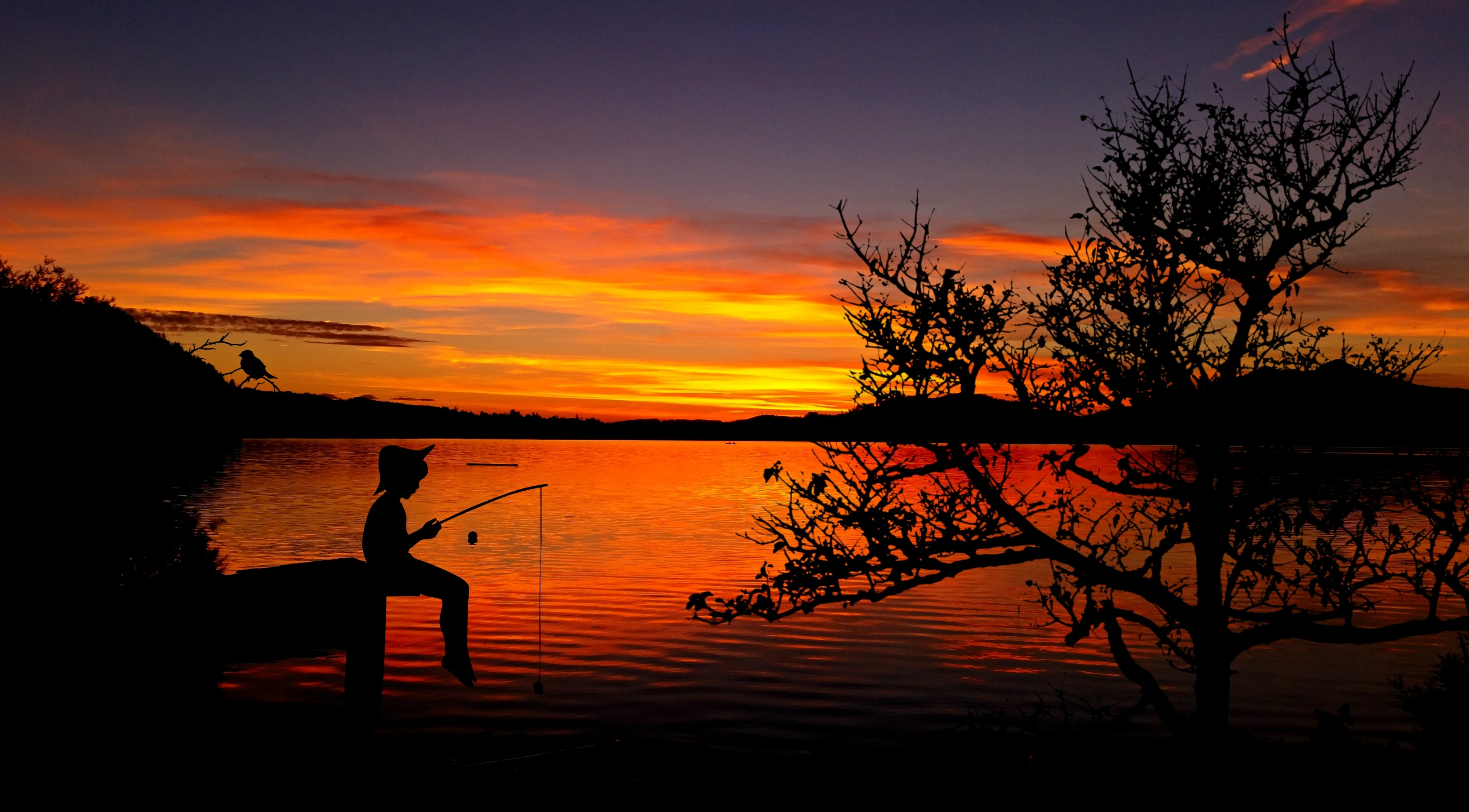 Silhouette Of Person Fishing Free Stock Photo