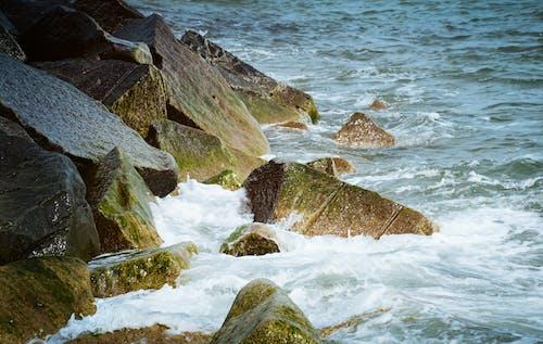 Δωρεάν στοκ φωτογραφιών με ακτή, αφρός, Βαλτική θάλασσα, βουτιά
