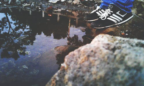 Immagine gratuita di acqua, alberi, ambiente, calzature