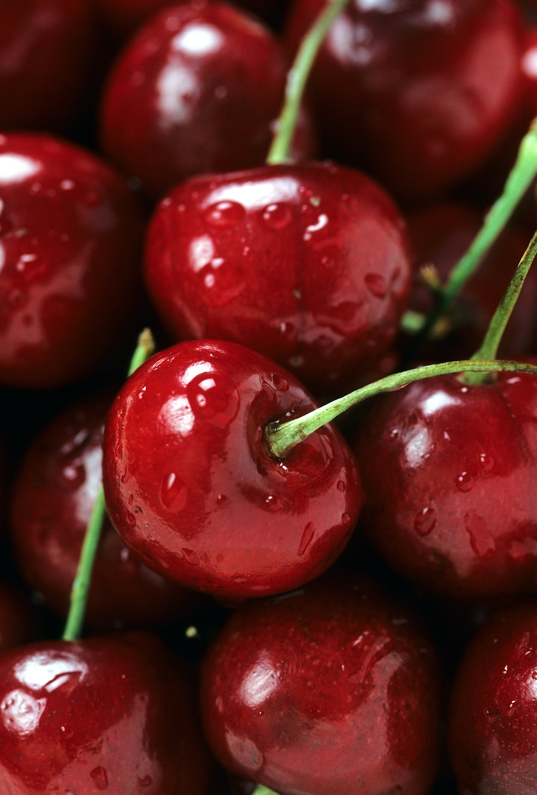 Close Up Photo of a Cherry Fruits