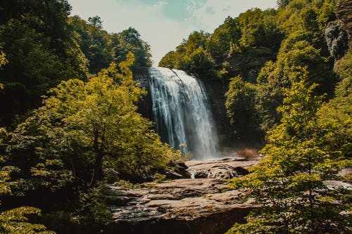 Photos gratuites de arbres, caillou, cascade, couler
