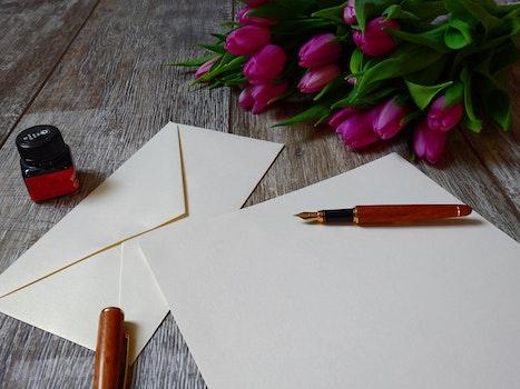Free stock photo of love, romantic, flowers, pen