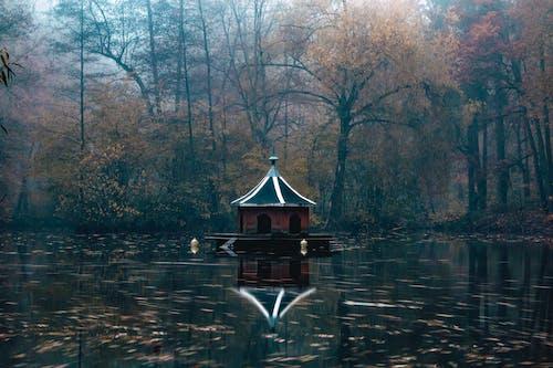 göl içeren Ücretsiz stok fotoğraf