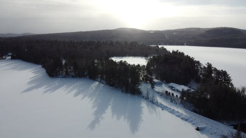 Aerial Photography of Snow-covered Field and Trees