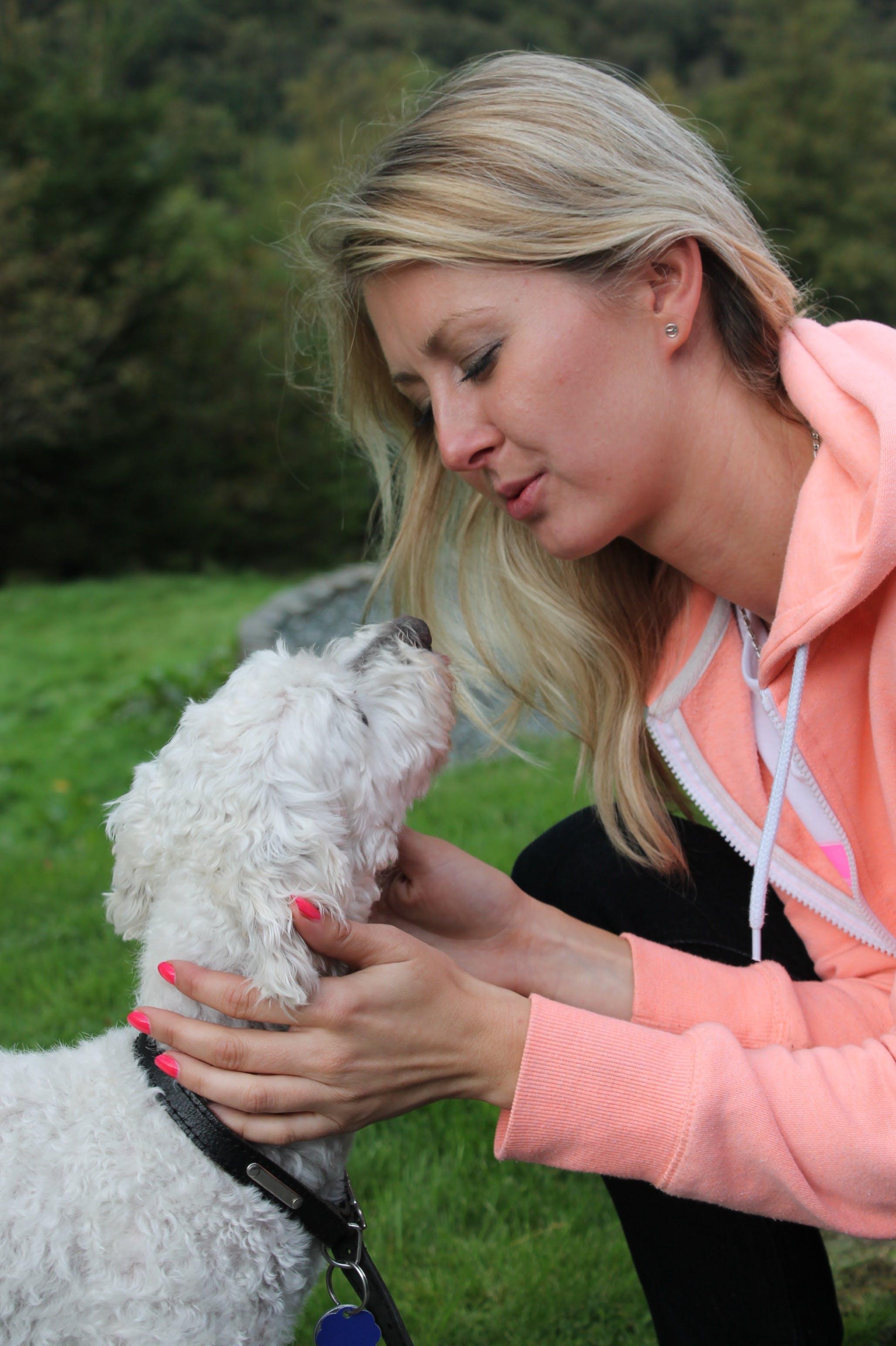Free stock photo of love, dog, friendship, devotion