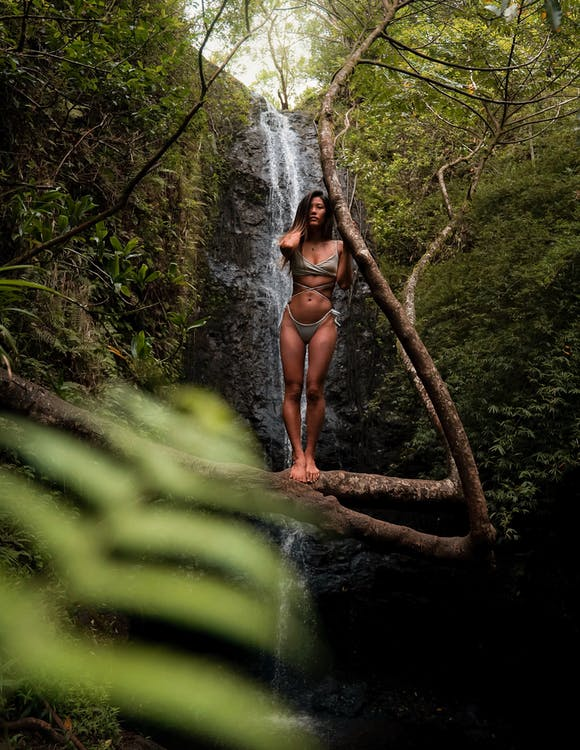 Woman Wearing Gray Bikini Standing on Tree Branch in Front of Waterfalls Near Trees during Day