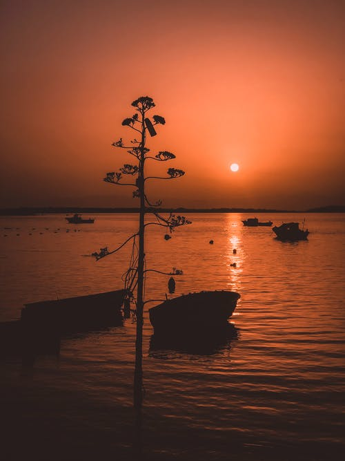 Sunset over calm sea with boats