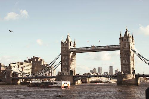シティ, タワー, タワーブリッジ, つり橋の無料の写真素材