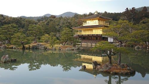Photos gratuites de arbres, architecture, asie, bâtiment