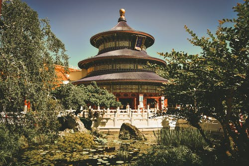 Бесплатное стоковое фото с архитектура, Буддизм, деревья, дзэн