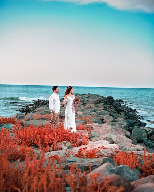 Foto stok gratis Adobe Photoshop, fotografi pernikahan, kalkun, pengantin perempuan