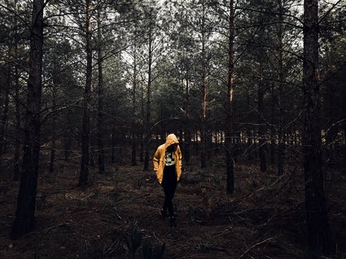Photo of Person Wearing Yellow Jacket