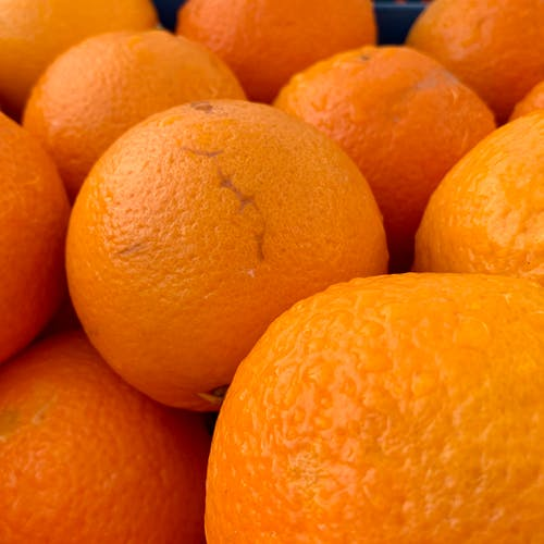Free stock photo of citrus fruit, citrus fruits, fris, fruits