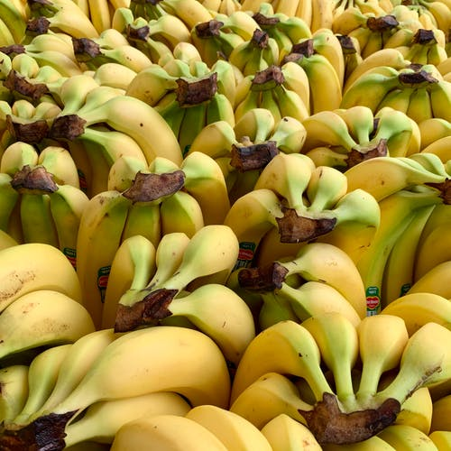 Free stock photo of bananas, cube, eating healthy, fruits