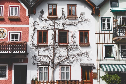 Free stock photo of city, houses, street, village