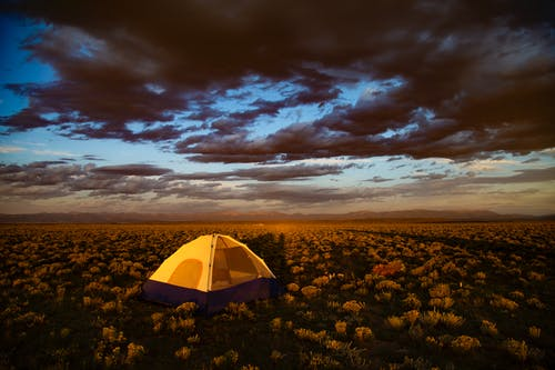 Set-up Brown Tent Surrounded by Flowers Under Cloudy Sky during Golden Hour