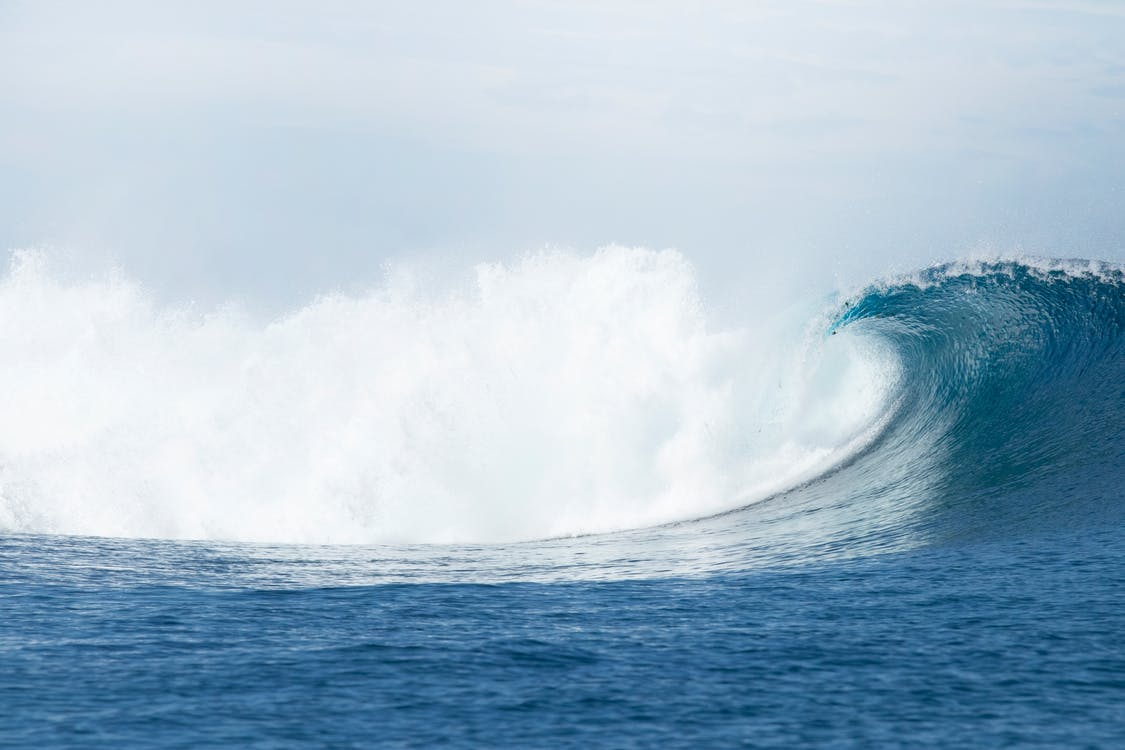 Deniz Dalgası