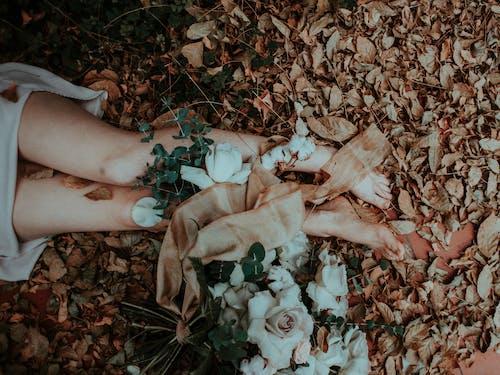 Darmowe zdjęcie z galerii z białe kwiaty, kwiaty, nogi, opadłe liście