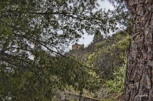 Δωρεάν στοκ φωτογραφιών με η zahara de la sierra (cadiz)