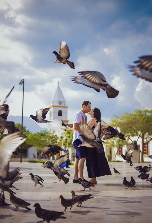 Photo Of Couple Kissing Surrounded By Birds