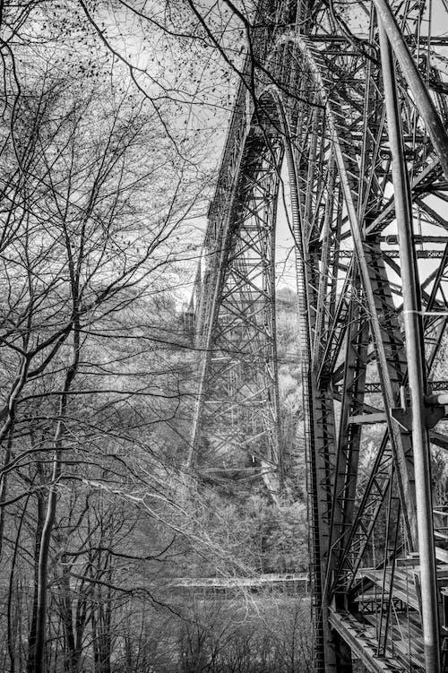Photos gratuites de acier, arbres, architecture, construction