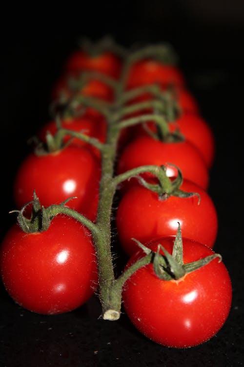 Free stock photo of cherry tomato, food, food photography