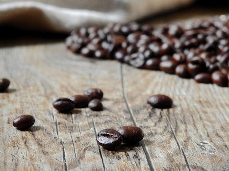 Free stock photo of food, beans, caffeine, dark