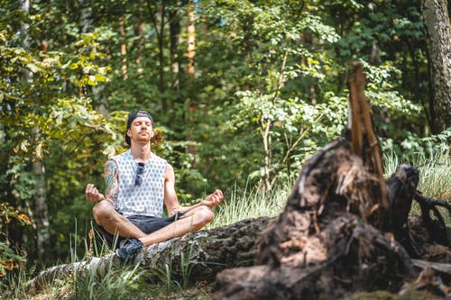 Foto d'estoc gratuïta de a l'aire lliure, assegut, autocura, bosc