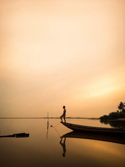 Foto d'estoc gratuïta de aigua, alba, arbres, barca