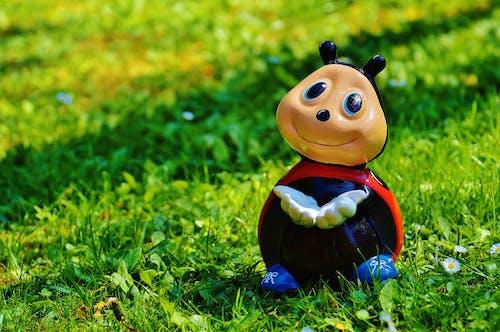 Kostnadsfri bild av färgrik, gräs, leksak, lycklig nyckelpiga