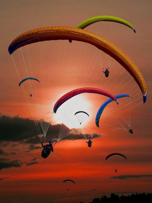 낙하산, 날으는, 모험, 사람의 무료 스톡 사진