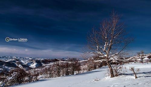 Gratis lagerfoto af landskabsfotografering, smukt landskab, vinter