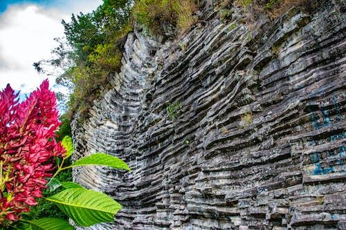 Free stock photo of basalt, Los Ladrillos, rock, volcanic