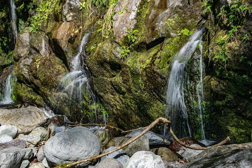 Free stock photo of Cliff Springs