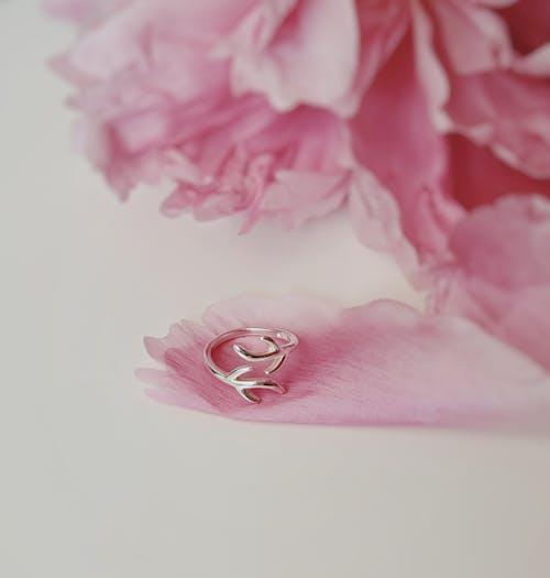 반지, 분홍색, 식물군, 액세서리의 무료 스톡 사진
