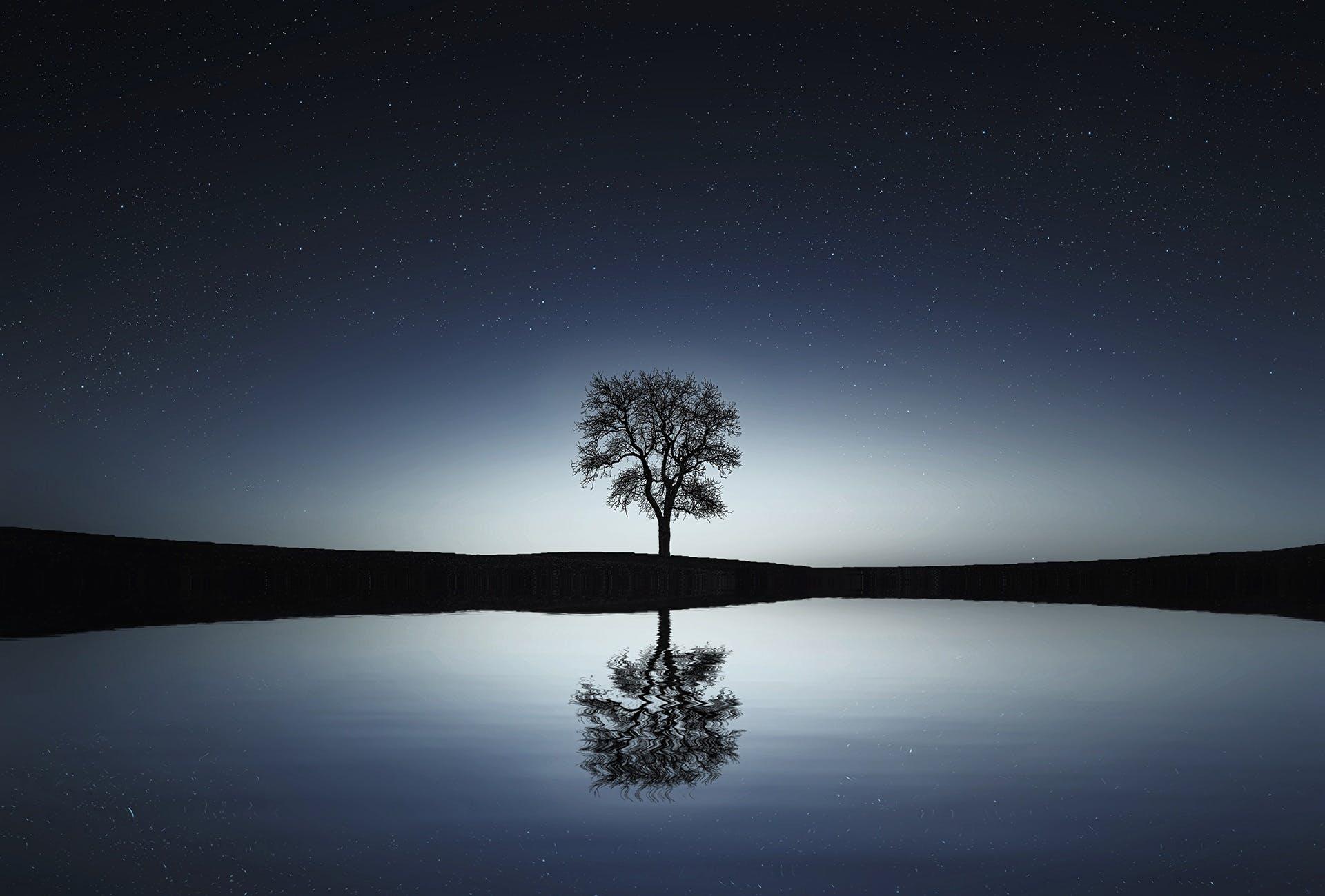 Free stock photo of landscape, nature, night, lake