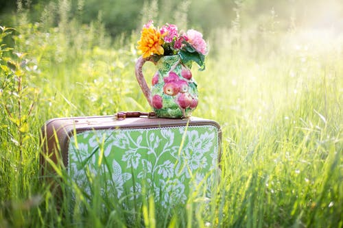 Red and Green Floral Suitcase