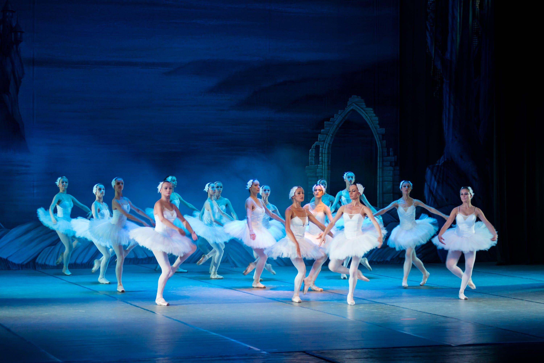 adult, ballerina, ballet