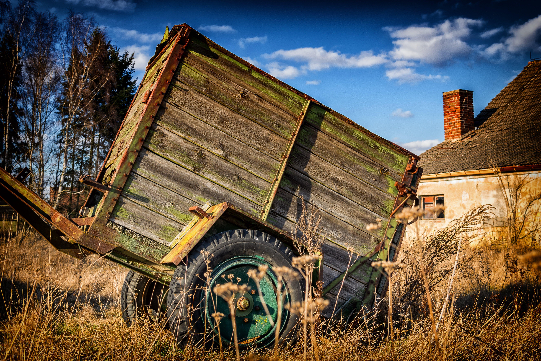 Безкоштовне стокове фото на тему «їздити, безтурботний, візок, Деревина»