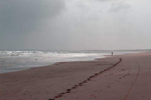 adam, bir başına, deniz içeren Ücretsiz stok fotoğraf