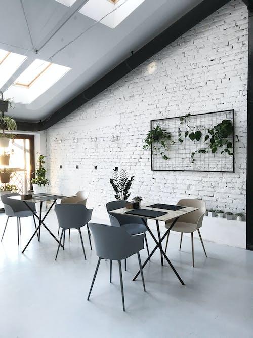 Foto d'estoc gratuïta de arquitectura, àtic, cadires, cafeteria